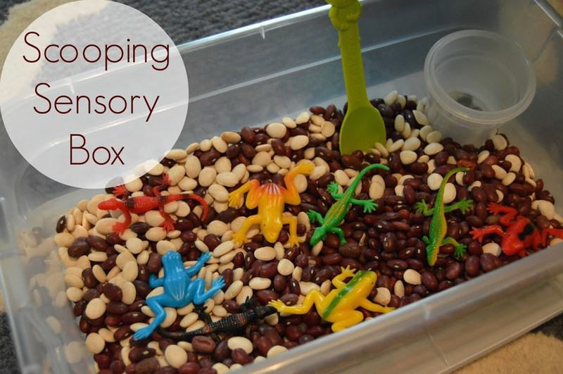 Sensory Box – Scooping