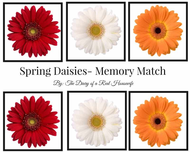 Free Printable Spring Flower Memory Match The Diary Of A