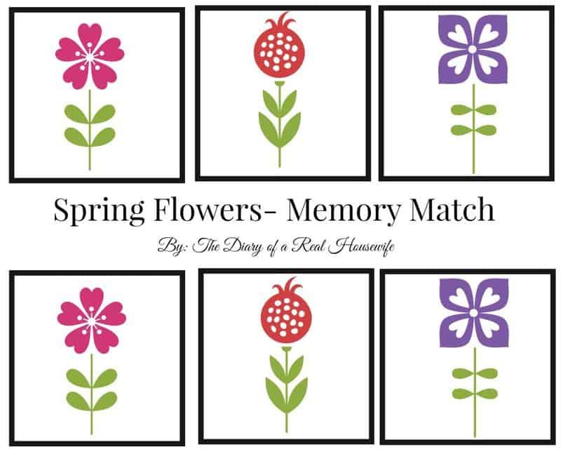 springmemorymatch