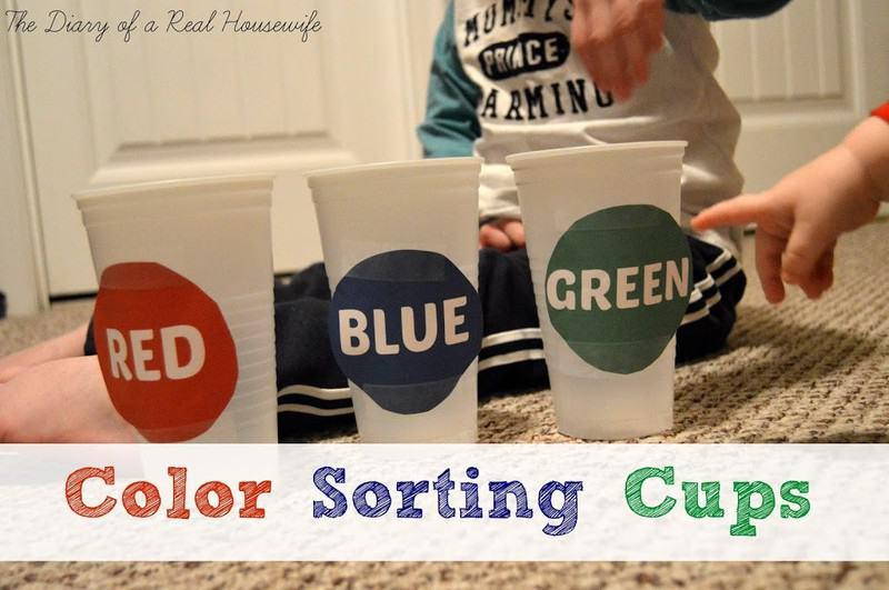 colorsortingcups1
