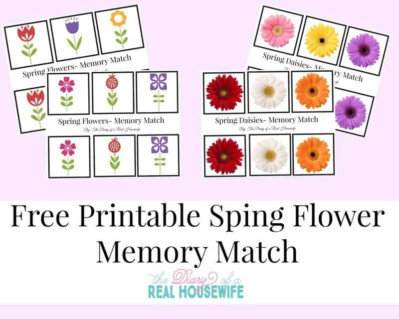 Free-Printable-Spring-Flower-Memory-Match--1024x819