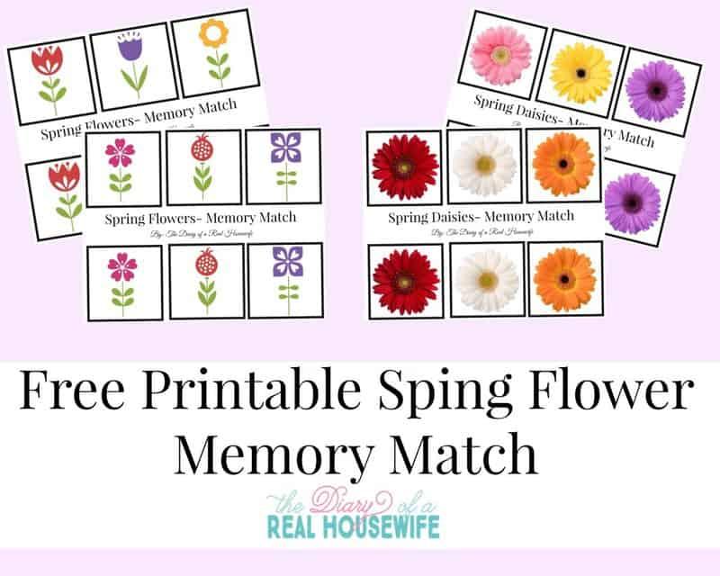 Free-Printable-Spring-Flower-Memory-Match--1024x819