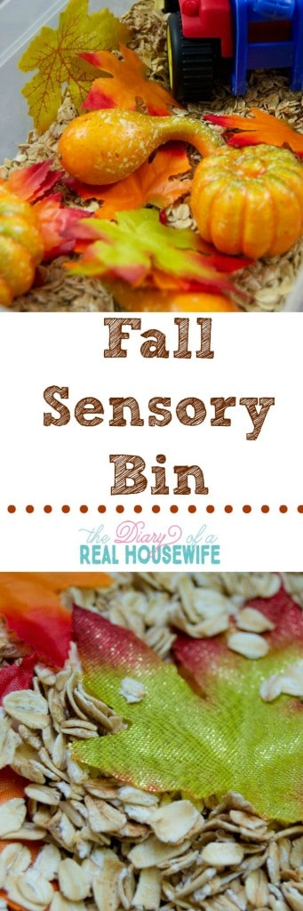 Fall Sensory Bin! I made this with stuff from the dollar store and my kids loved it!