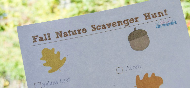 Fall  Nature Scavenger Hunt for Toddlers