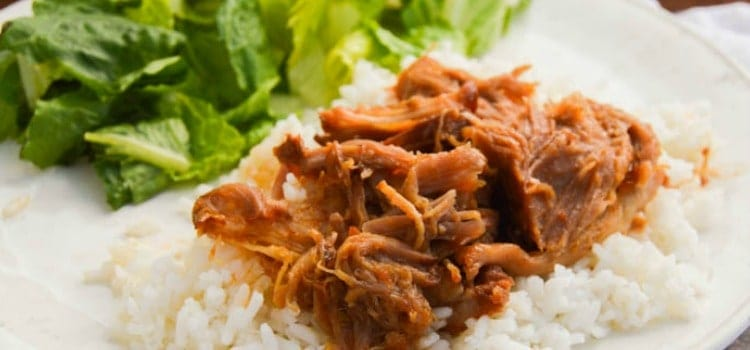 Slow Cooker Sweet Salsa Pork