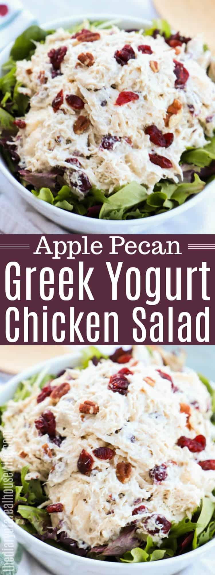 Apple Pecan Greek Yogurt Chicken Salad