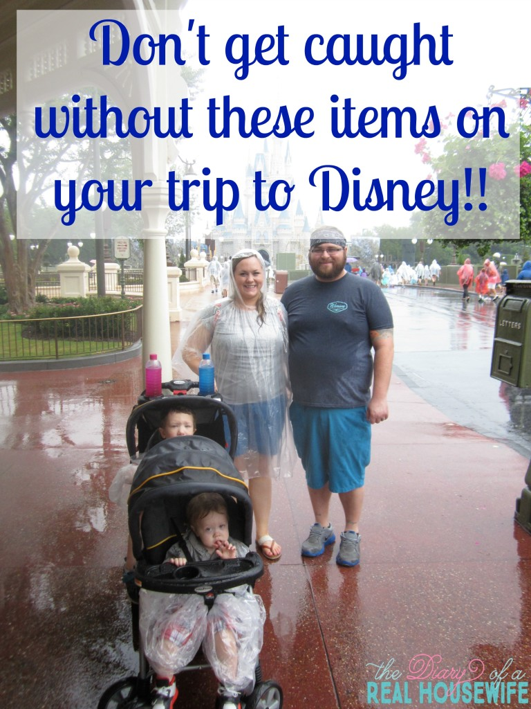 What you HAVE to have for Disney