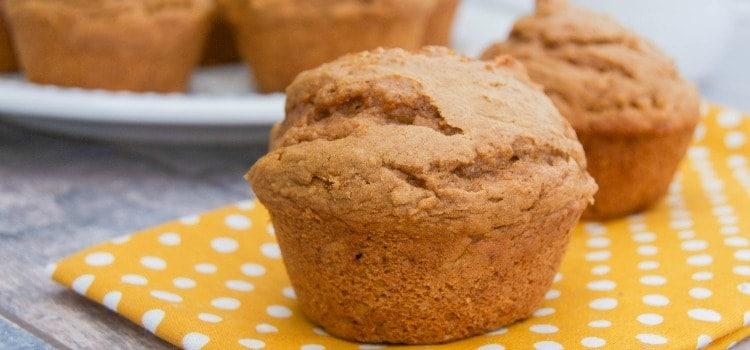 2 Ingredient Pumpkin Spice Muffins