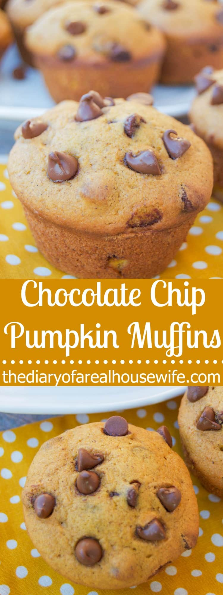chocolate-chip-pumpkin-muffins