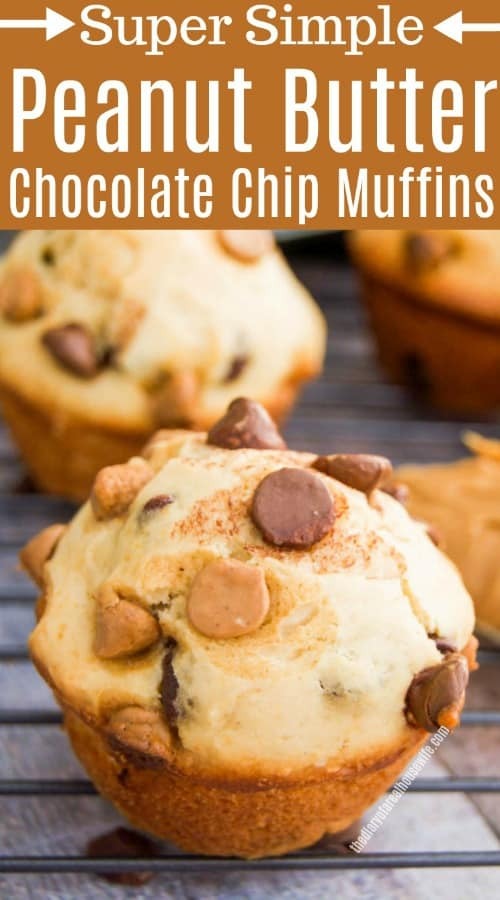 Peanut Butter Chocolate Chip Muffins