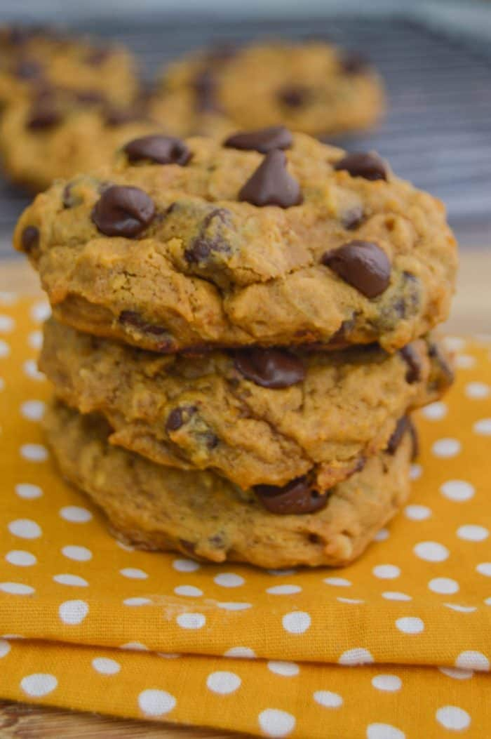 Pumpkin Oatmeal Chocolate Chip Cookie