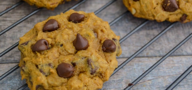 Pumpkin Oatmeal Chocolate Chip Cookie