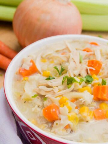 Slow Cooker Creamy Chicken and Noodle Soup