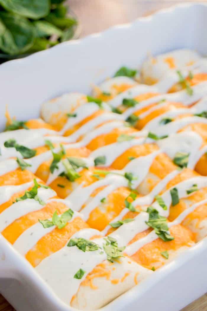 Cheesy Ranch Chicken Enchiladas in white baking dish