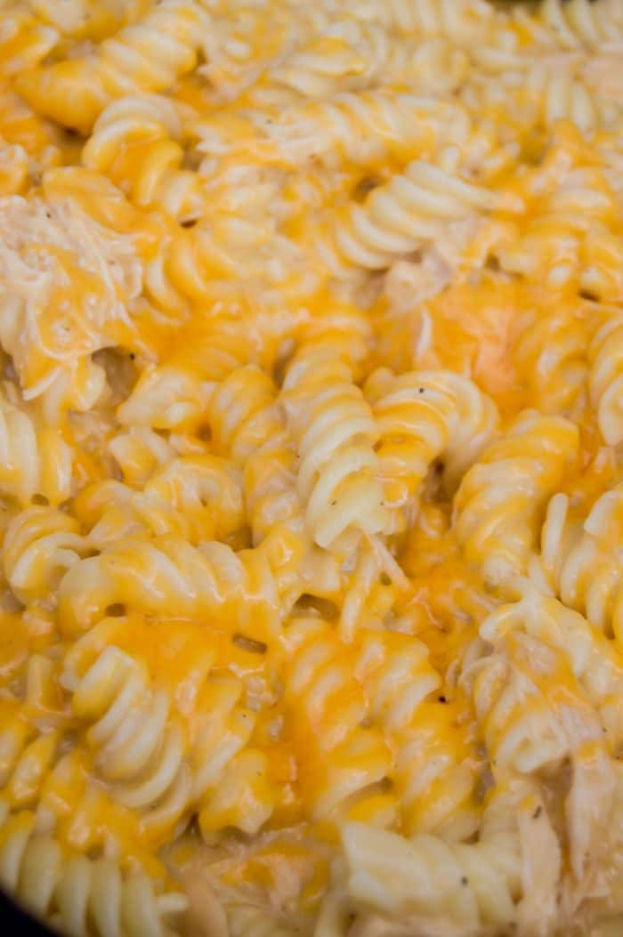 Slow Cooker Cheesy Chicken Rotini