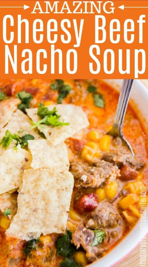 Beef Nacho Soup