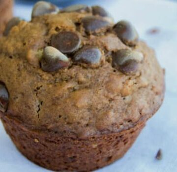 Double Chocolate Oatmeal Muffins