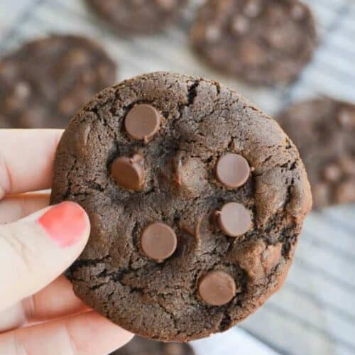 Chocolate Chocolate Chip Cookie