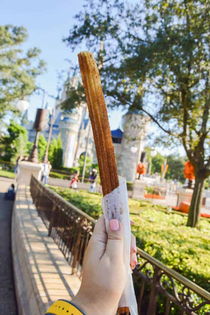 The Best Snacks in Magic Kingdom
