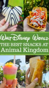 The Best Snacks in Disney - Animal Kingdom