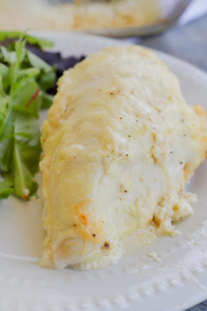Baked Creamy Swiss Chicken on a white plate