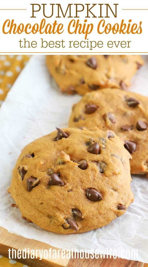 Pumpkin Chocolate Chip Cookies closeup on parchment paper