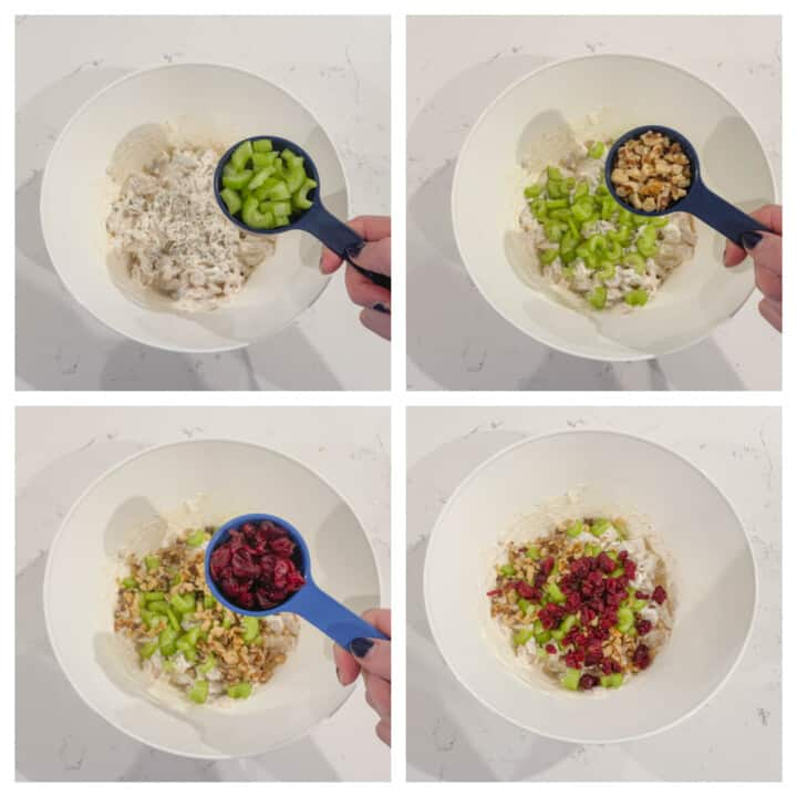 Adding celery, walnuts and cranberries to chicken salad mix