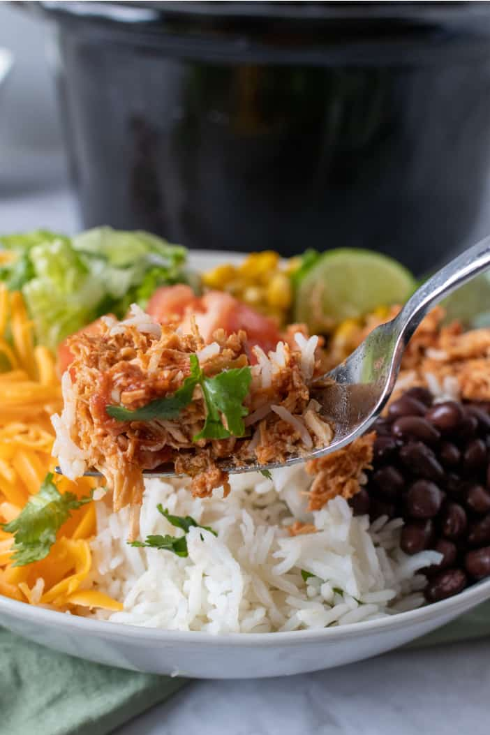 Slow Cooker Shredded Mexican Chicken on a fork