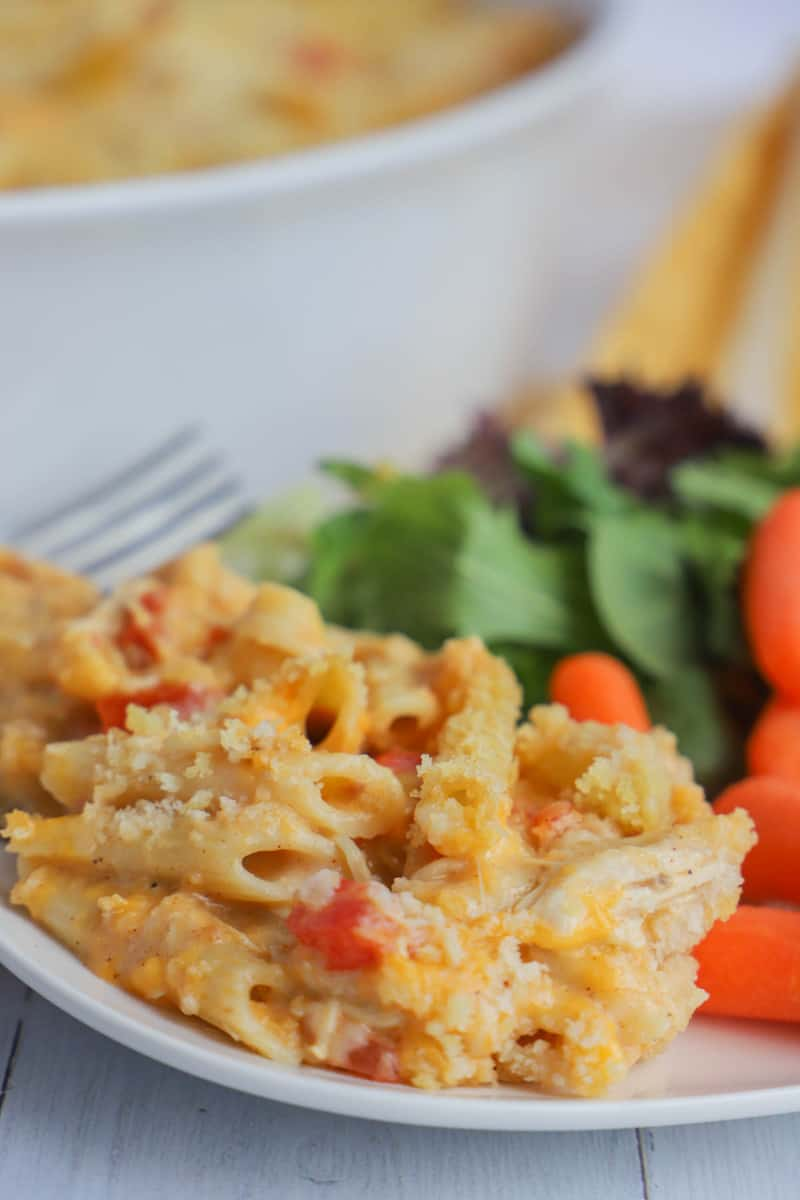 Cheesy Chicken Casserole on a white plate with salad