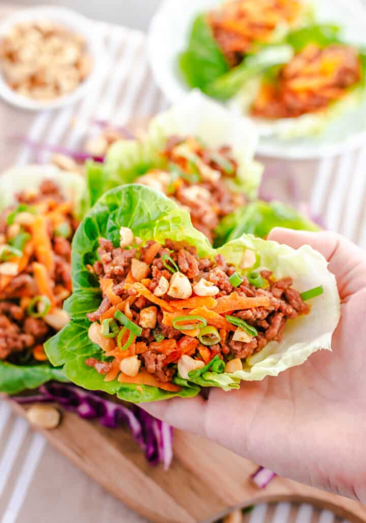 lettuce wrap in hand close up picture