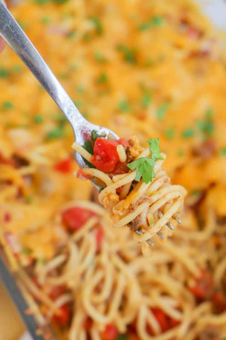 taco spaghetti twirled on fork
